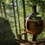 La casa-árbol oculta en los bosques de Canadá.