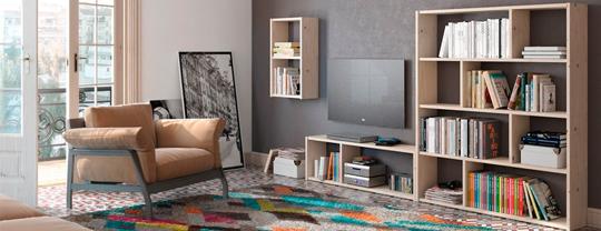 Composicion de Muebles LUFE para salon