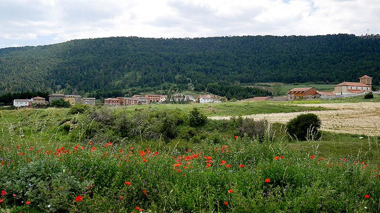 Hogar LUFE: Albergue Los Griegos en Teruel.